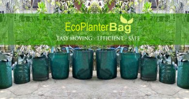 Produsen Planter Bag, Jual Planter Bag untuk Perkebunan, Project Landscape dan Nursery